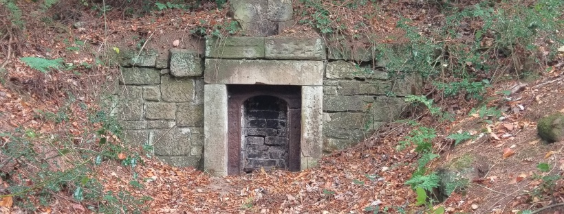 Fireplace In The Forest