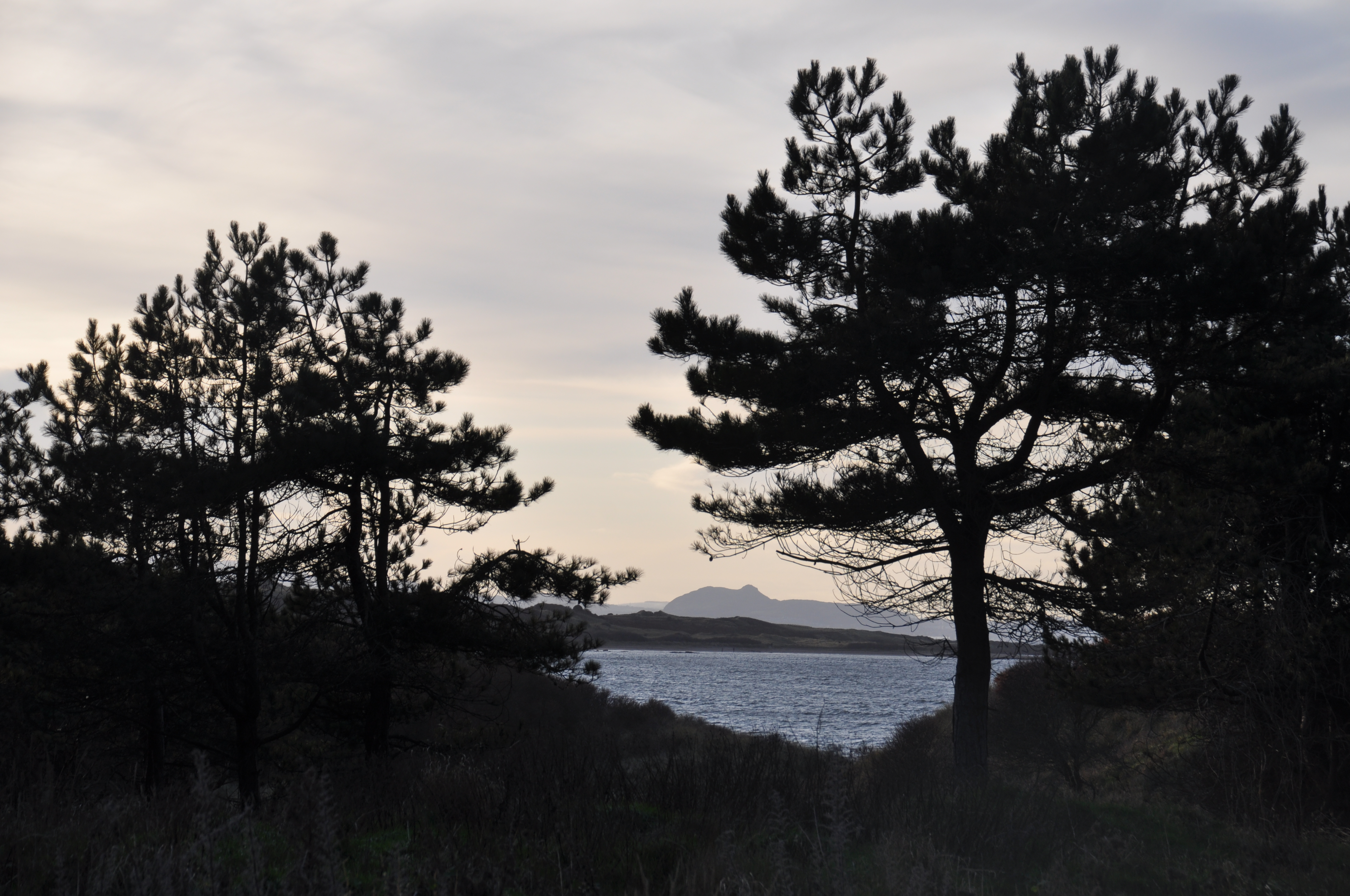 Arthur's Seat seen through a gap in the trees drom the woods above the shore at Gullane beach