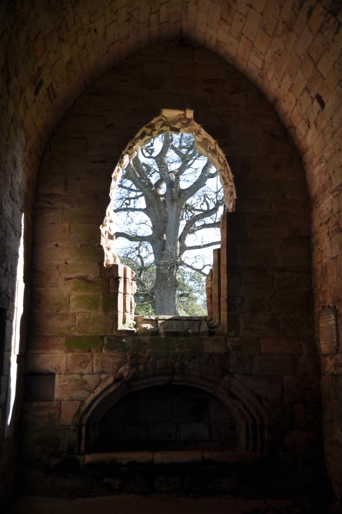 View Through Dunglass Collegiate Church Window